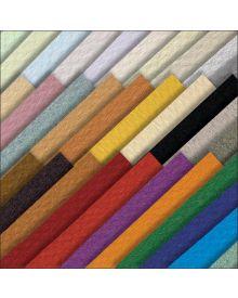 Mi-Teintes Pastel Paper 160 gms Sheets 21 x 29-inch