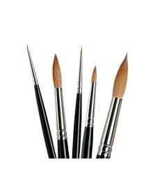 Dynasty Fine Kolinsky Short Handle Artist 5pc Brush Holder Case Set