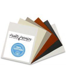 Pastel Premiere Sanded Pastel Paper Single Sheets