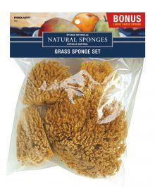 Pro Art Grass Natural Sponge Set with Bonus