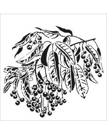 The Crafters Workshop Stencil - Sweet Berries 6 x 6 inch