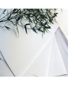 Awagami Bamboo Paper