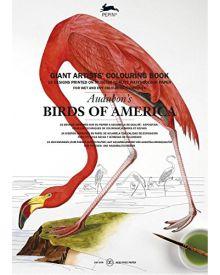 PEPIN GIANT Colouring Books - Audubon's Birds of America