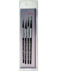 Dynasty Black Silver Brush SH Round #1-4 Piece Set