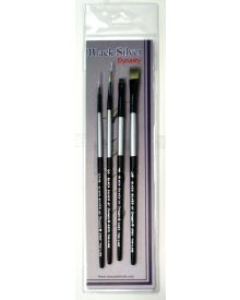 Dynasty Black Silver Brush SH #6-4 Piece Set