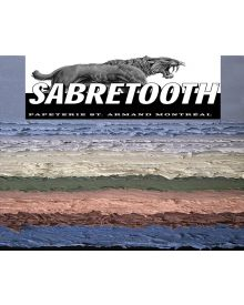 Saint Armand Sabretooth Sanded Pastel Papers