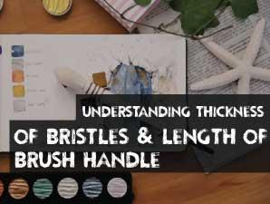 Understanding Thickness of Bristles & Length of Brush Handle