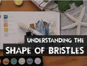 Understanding the Shape of Bristles